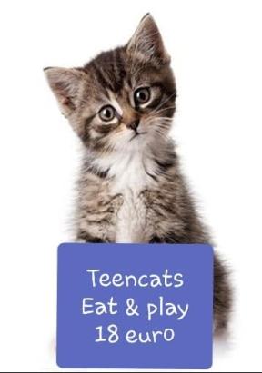 Teen-eet play.jpg